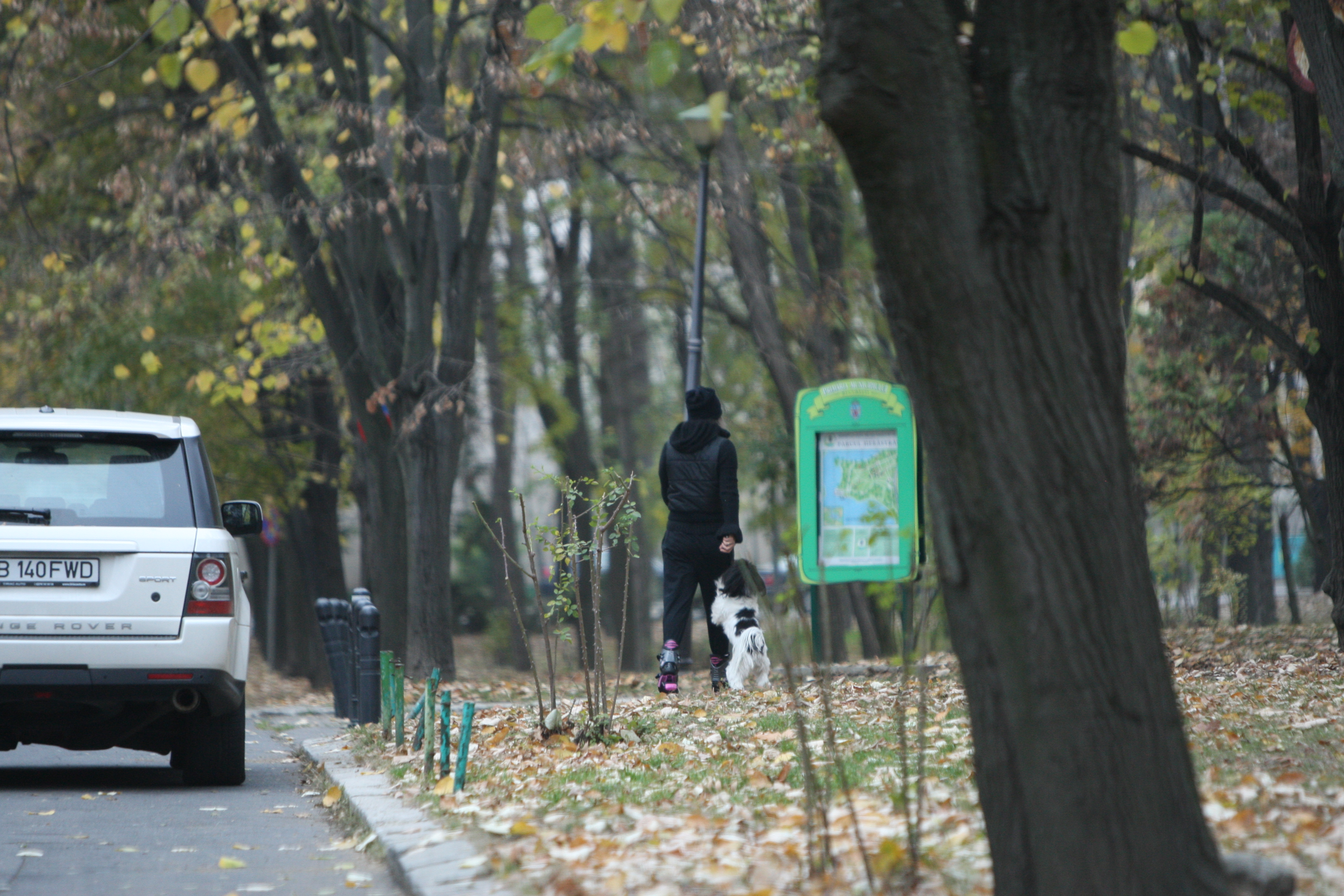 Tania Budi a luat-o pe jos pe aleile din parc, impreuna cu catelusul ei, care avea chef de joaca