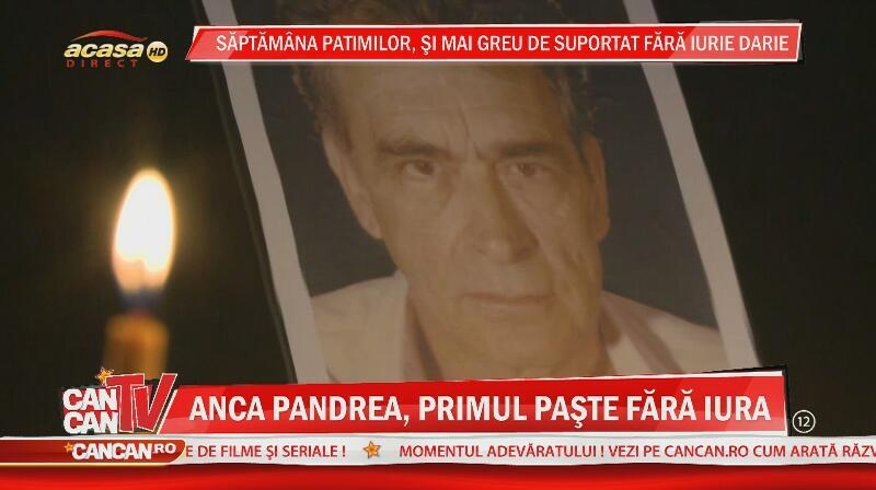 Anca Pandrea - 3