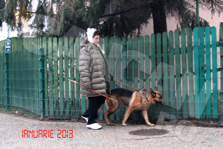 Nici cand e foarte frig, artista nu renunta la plimbare