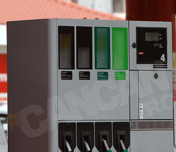 Pentru 45 de litri de carburant, Romica Tociu a platit aproape 300 de lei