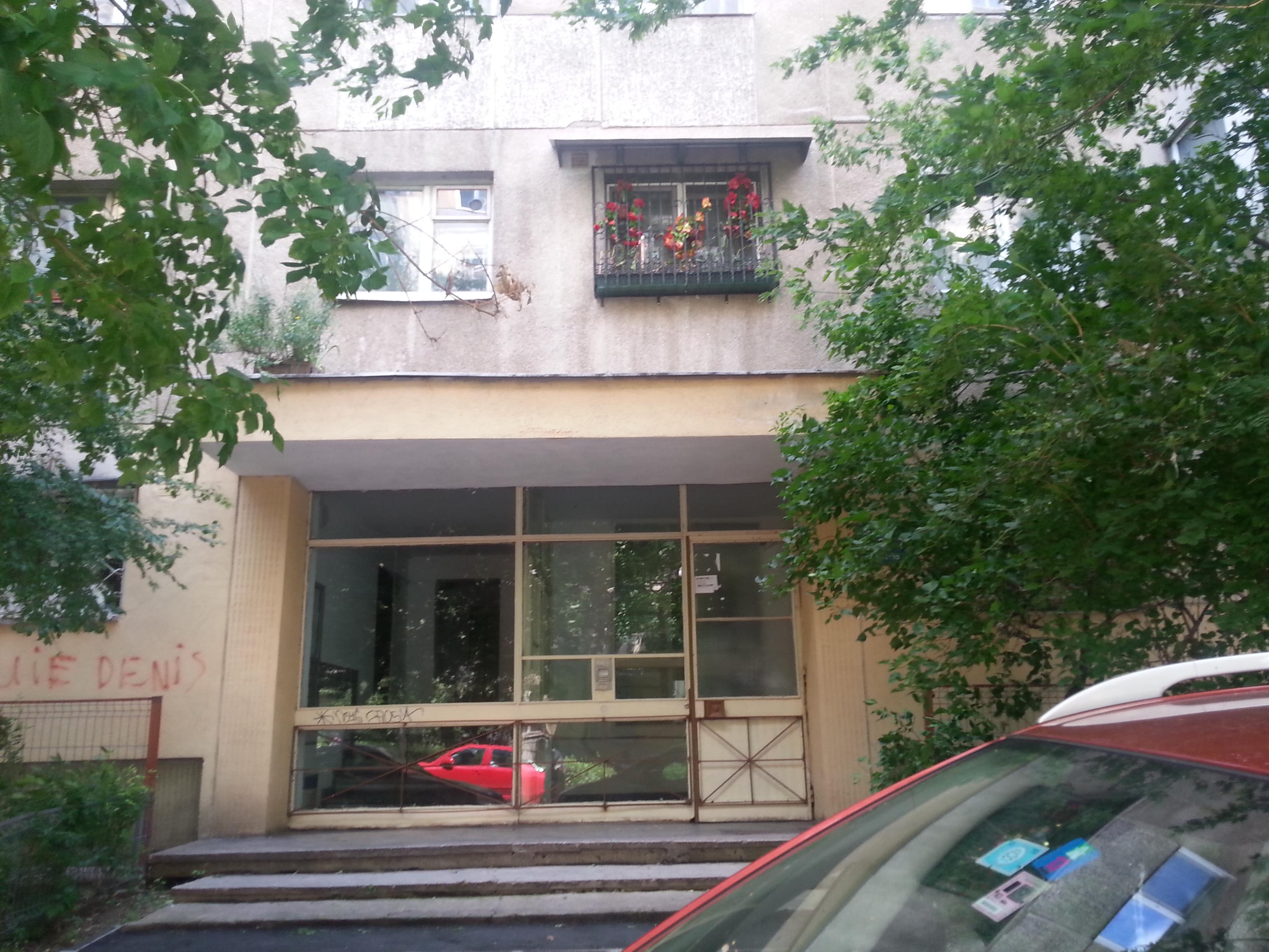 Doar florile artificiale de la geam au mai ramas de apartamentul lui Marian Nistor