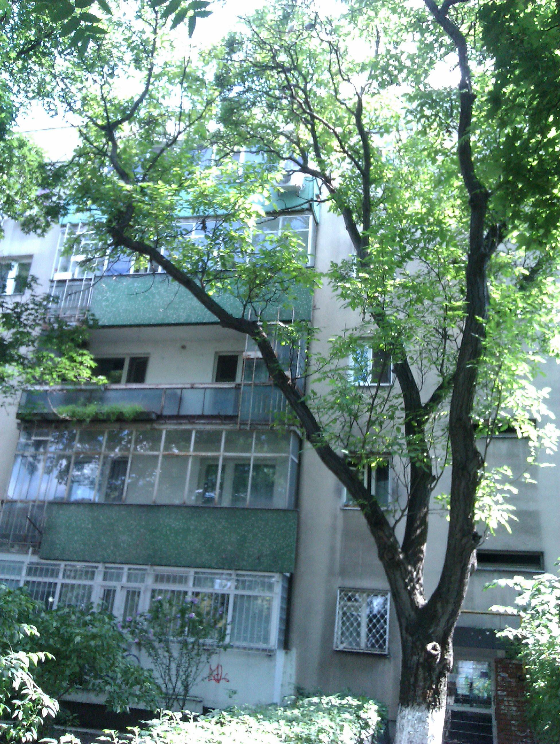 Acesta este blocul in care locuieste Gheorghe Marmureanu