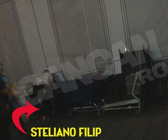 steliano