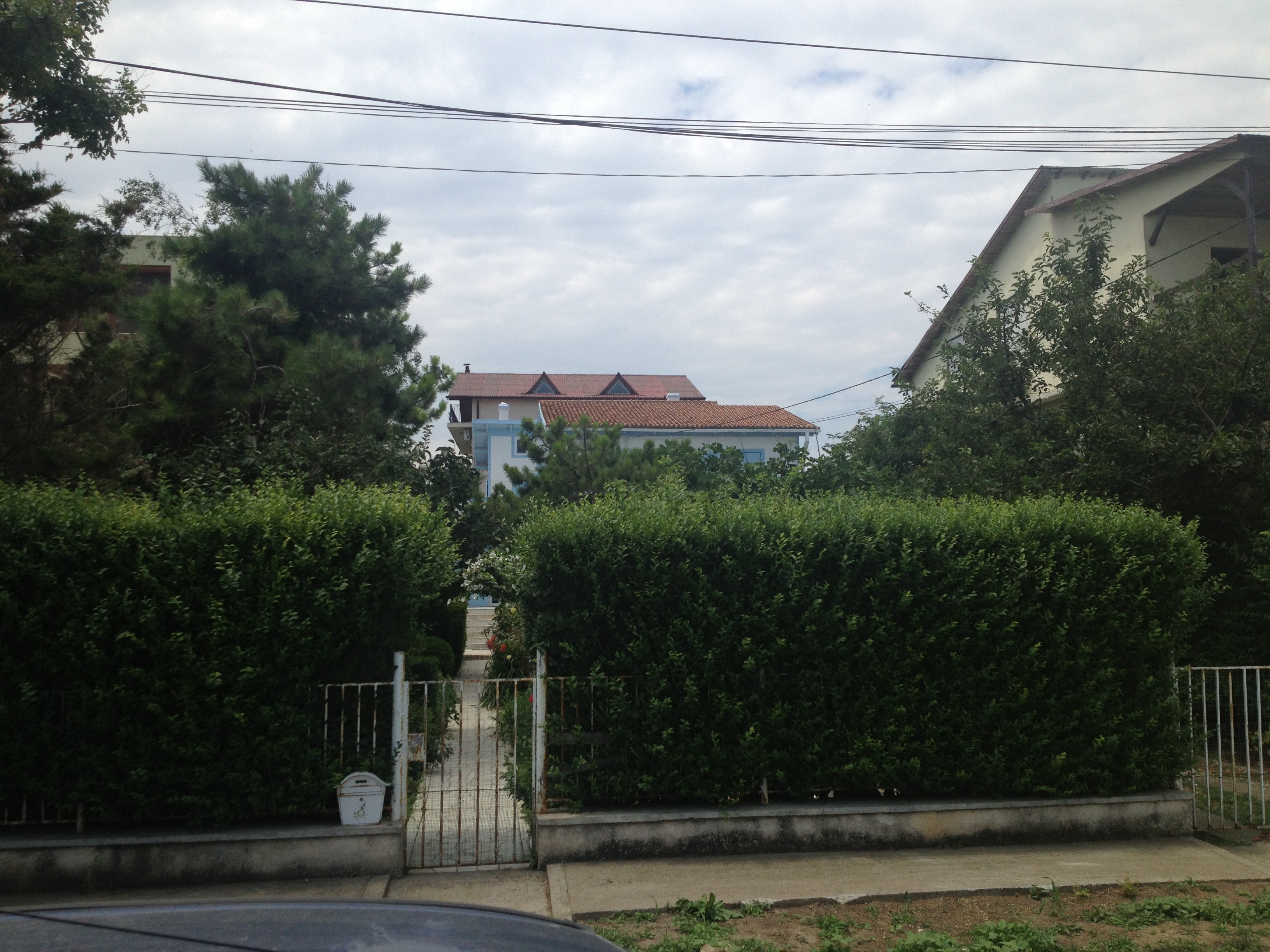 Vila este flancata de un gard viu, inalt, pentru a tine la distanta curiosii
