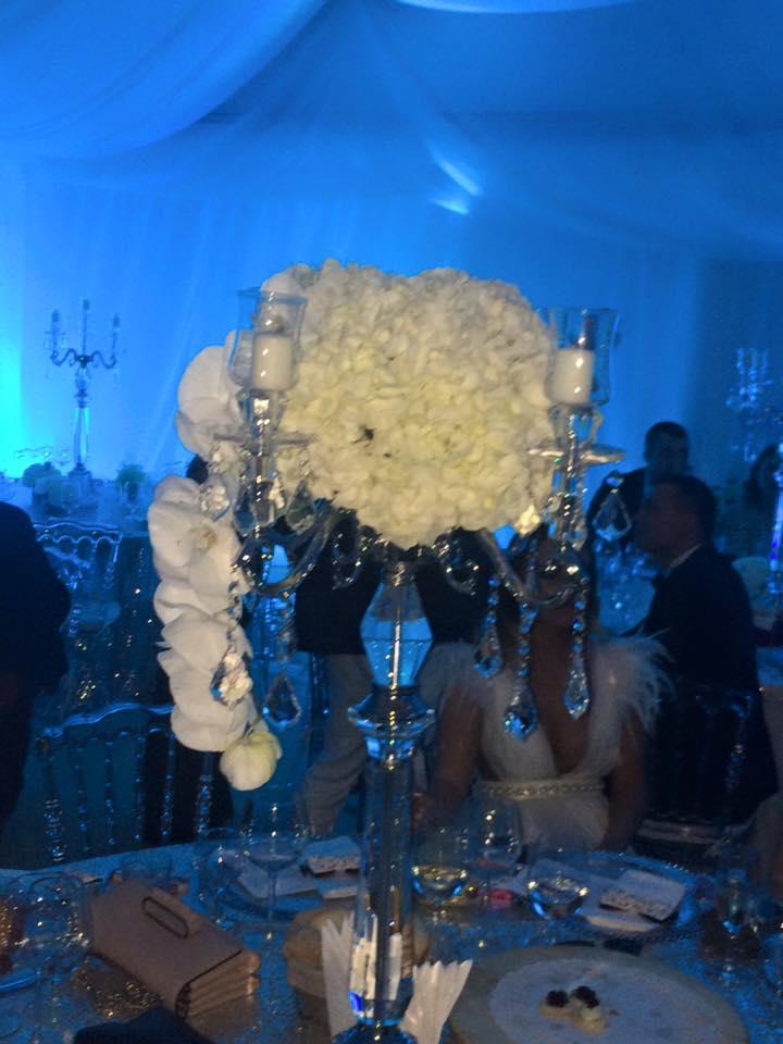 Petrecerea de nunta a Andei Adam