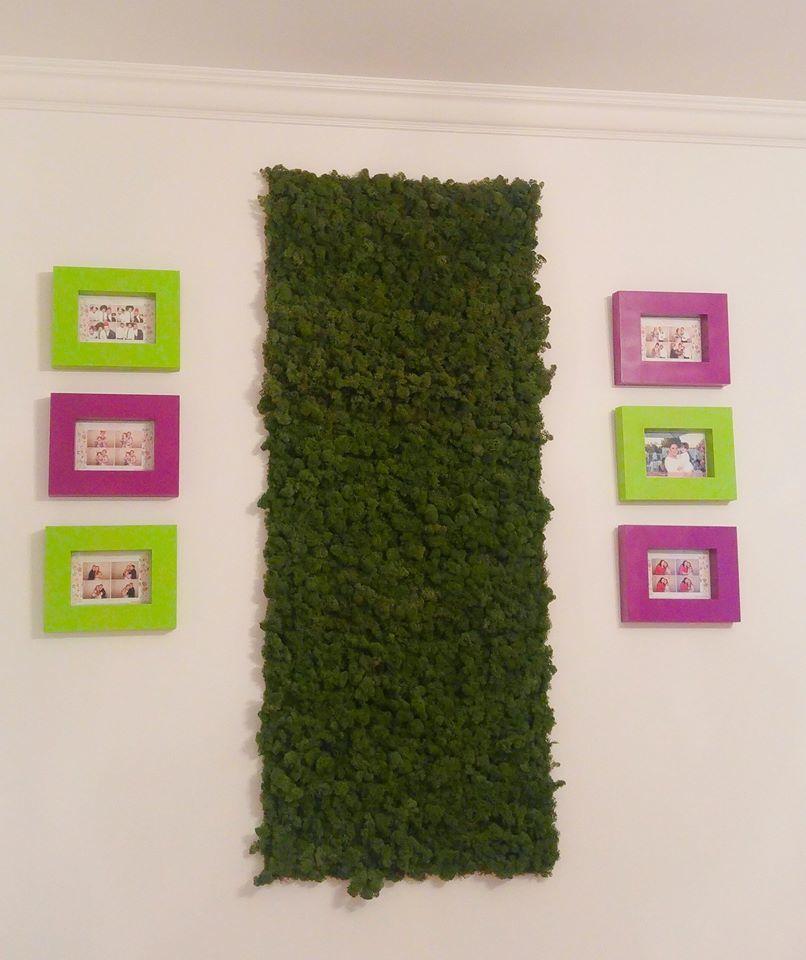 Tabloul cu licheni cu care Oana Roman şi-a decorat pereţii