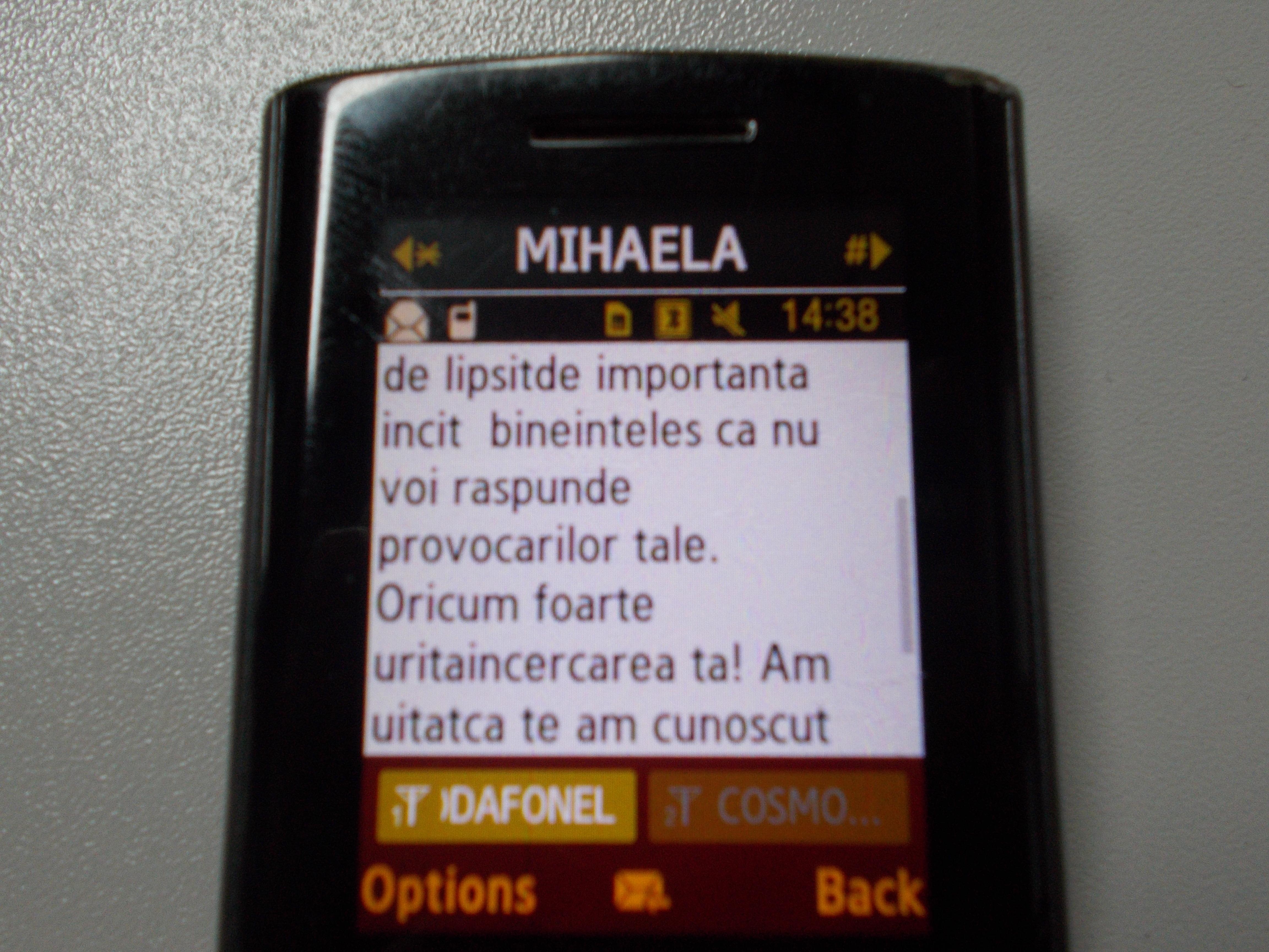 Mesaj Mihaela Constantinescu