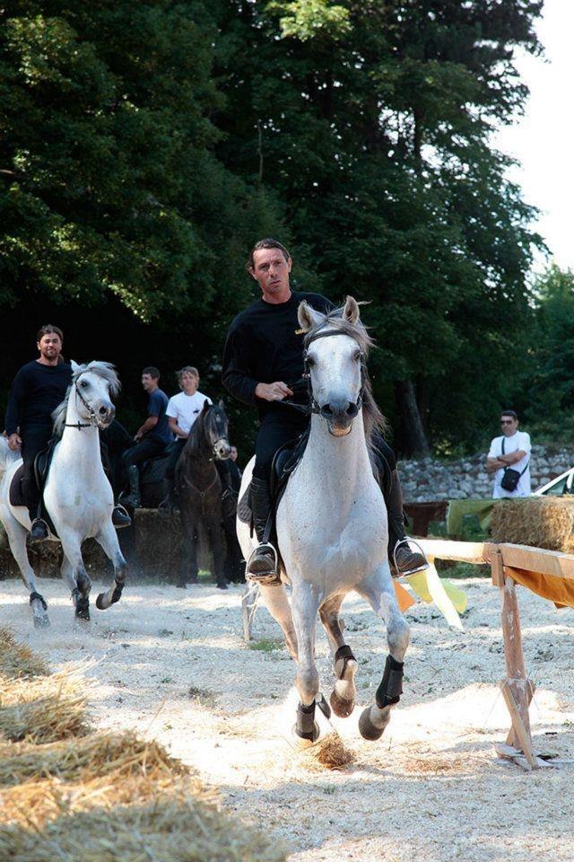Boata spune ca vrea sa se dedice echitatiei, marea sa pasiune(sursa foto: www.calarie-voluntari.com)