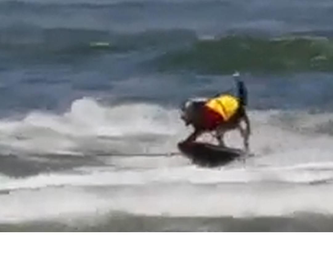 Jumpy adora surfingul