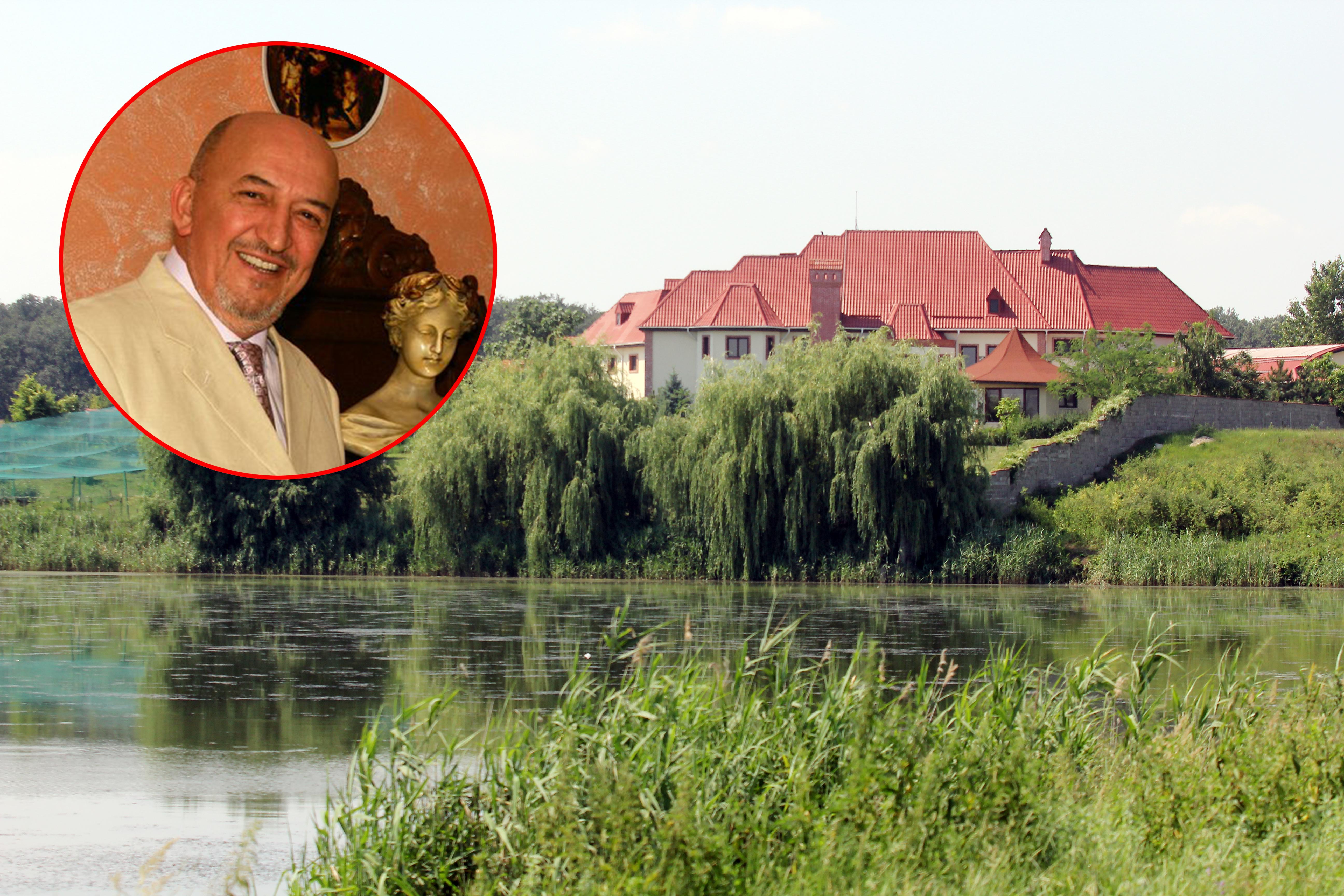 Crin Halaicu si-a construit un palat pe marginea lacului Mogosoaia