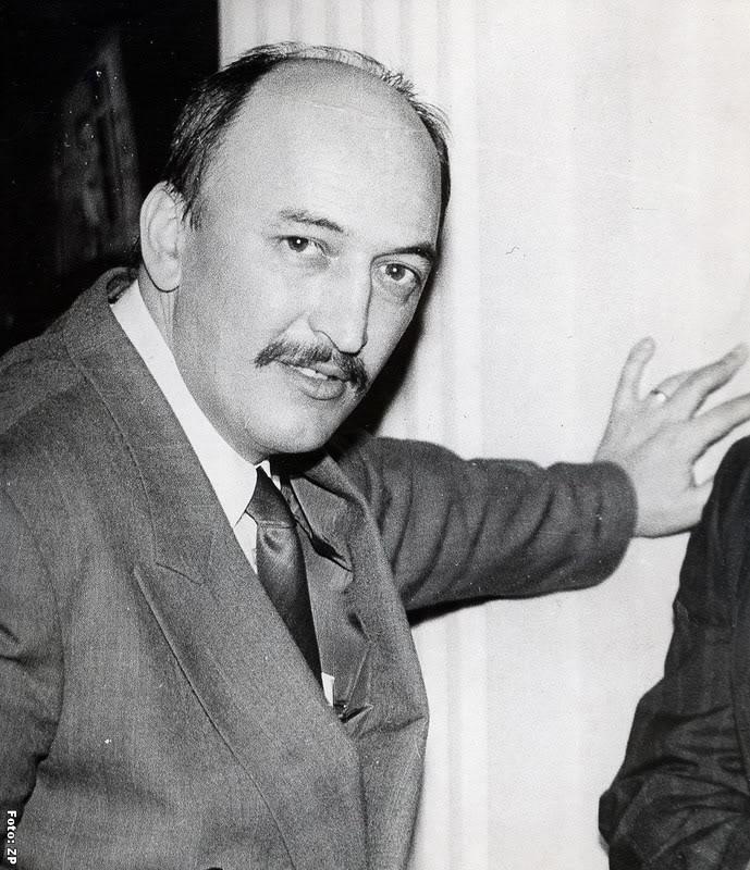 Crin Halaicu