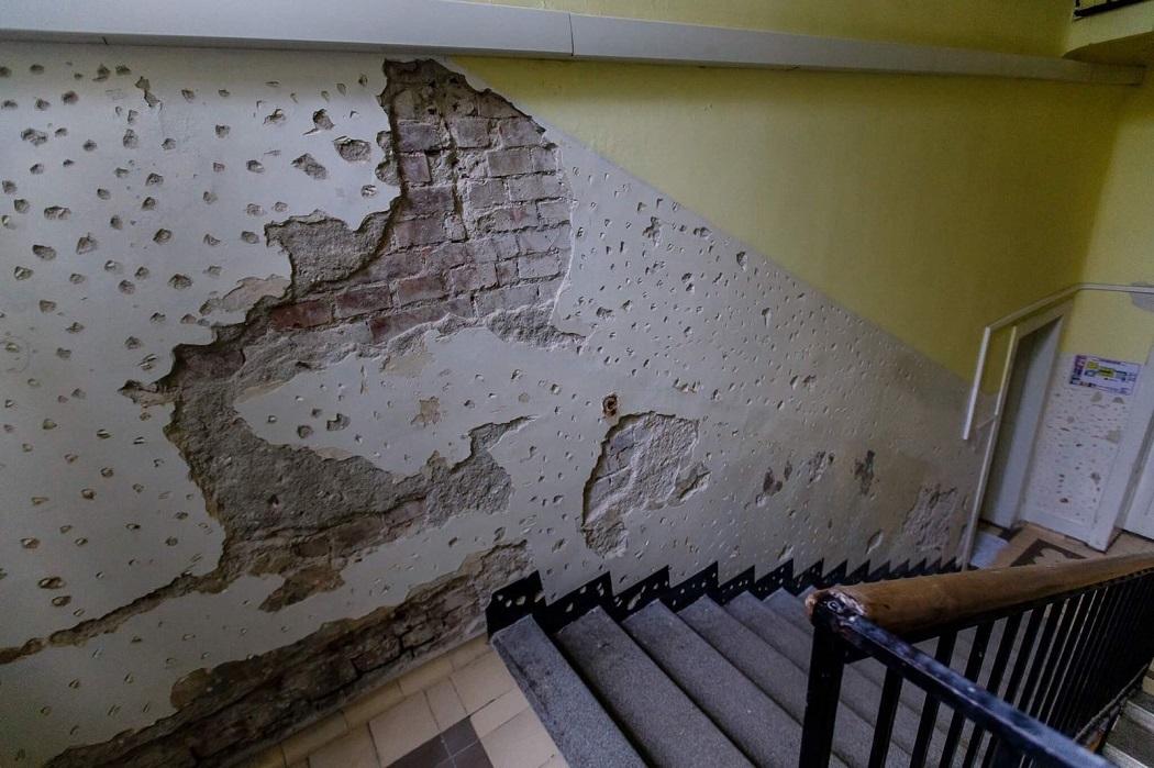 Ca să scape de gândaci, aproape că au dărâmat pereţii
