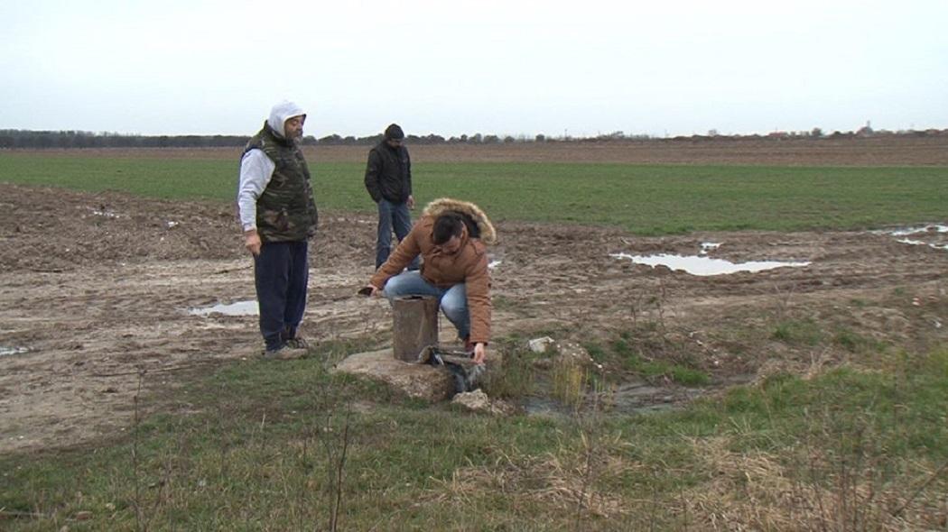 Bogăţia din pământ se scurge pe câmp