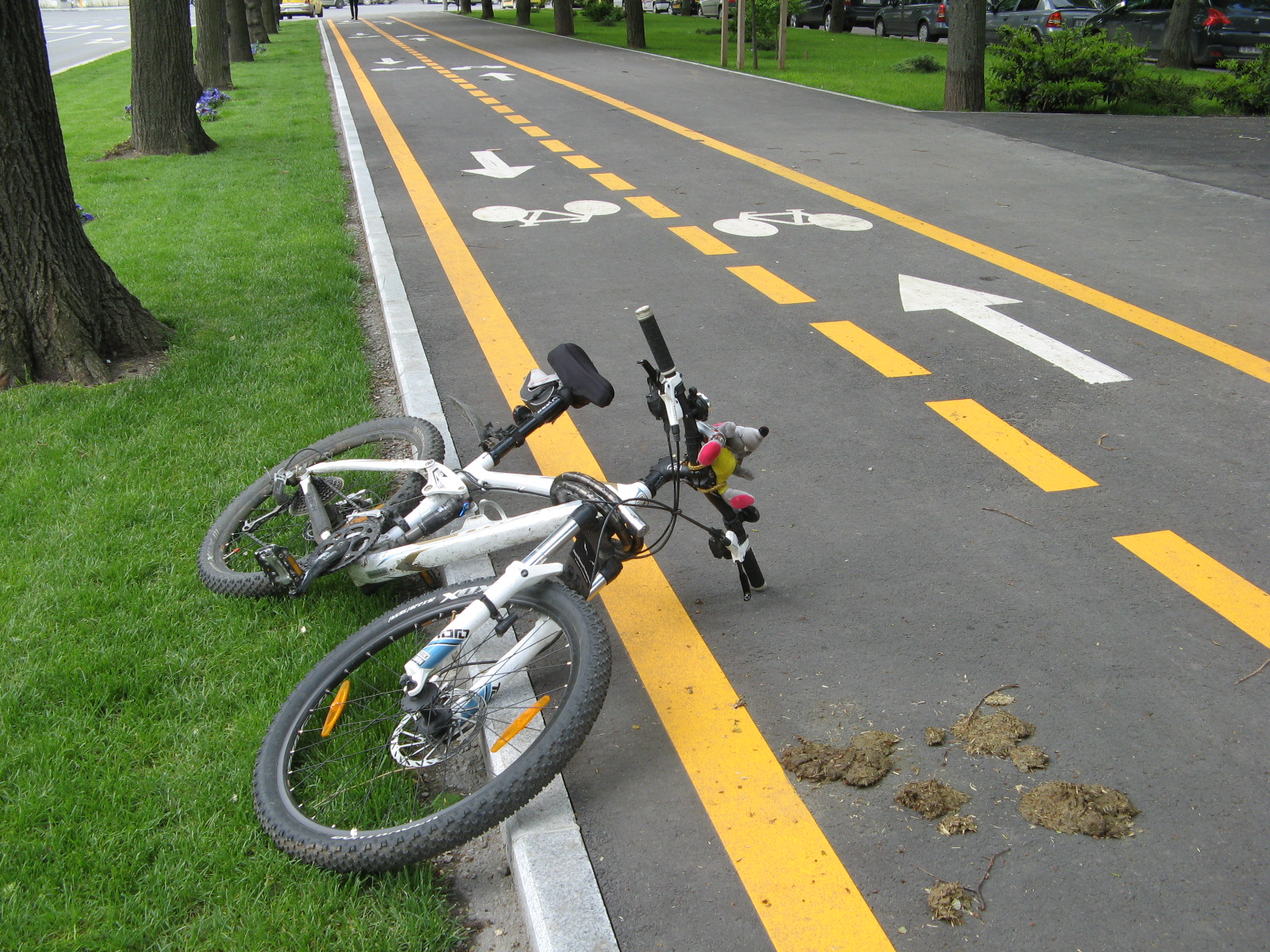 Primarul General, Sorin Oprescu a propus astazi, 29 aprilie 2014, Consiliului General al Municipiului Bucuresti proiectul de Hotarare privind includerea in Bugetul propriu al Municipiului Bucuresti pe anul 2014 a sumelor aprobate de Guvernul Romaniei pentru implementarea unui sistem de transport cu bicicleta