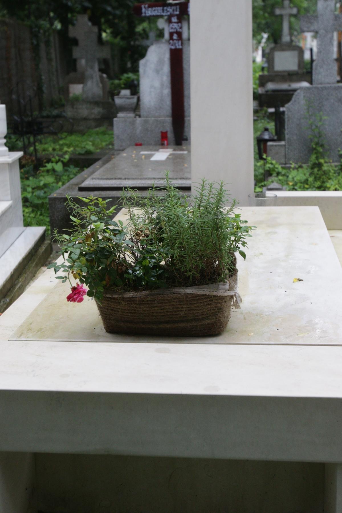 Florile de pe monumentul funerar al artistului mai au putin si se ofilesc