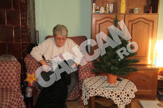 Ioana Maria Vlas se