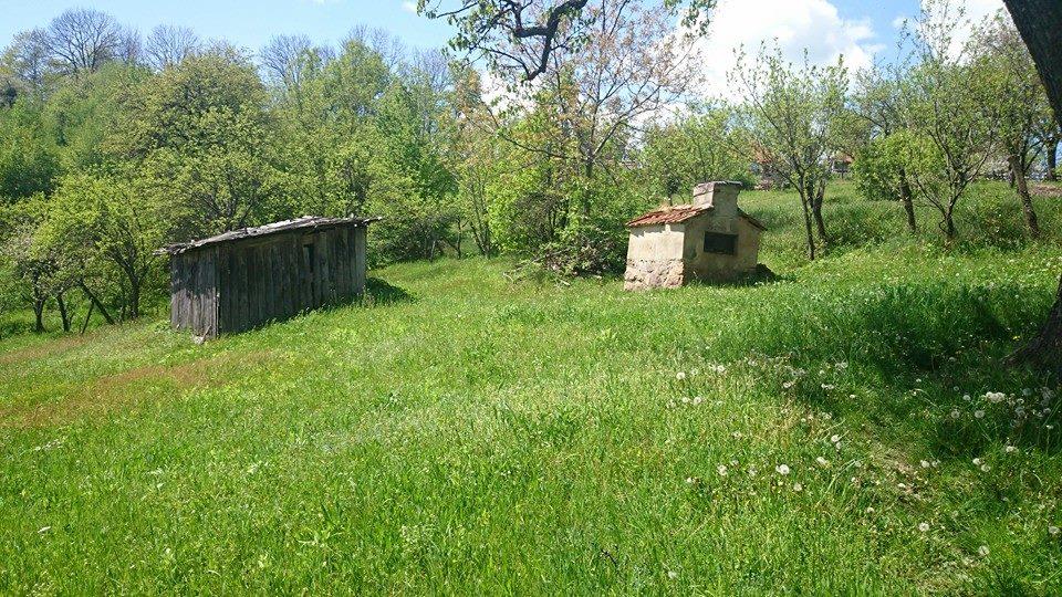 Alex si-a luat un domeniu de vis langa Cluj