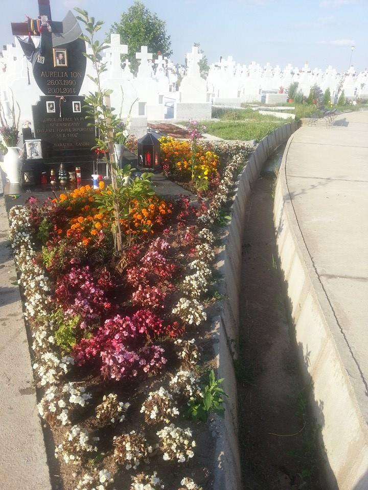 Locul unde tanara studenta la medicina isi doarme somnul cel de veci este inconjurat de zeci de flori