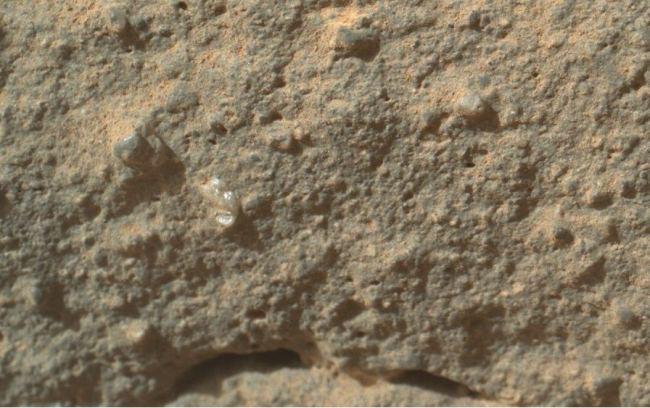 Există viaţă pe Marte? Staţia spaţială NASA, Curiosity, a fotografiat ceea ce pare a fi o floare! Voi ce credeţi?