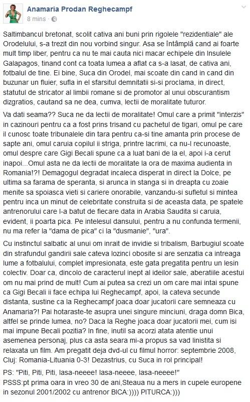 Mesajul făcut public de Anamaria Prodan