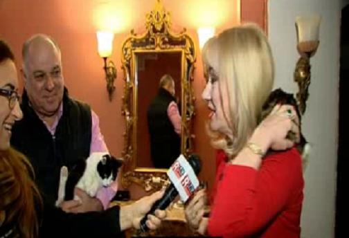 Sotii Marinescu ne-au intampinat cu doua dintre pisicile familiei