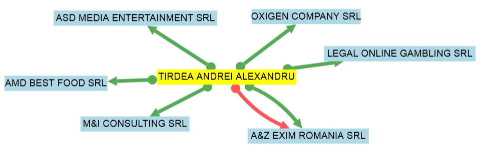 Acestea sunt firmele deţinute de Târdea, potrivit termene.ro