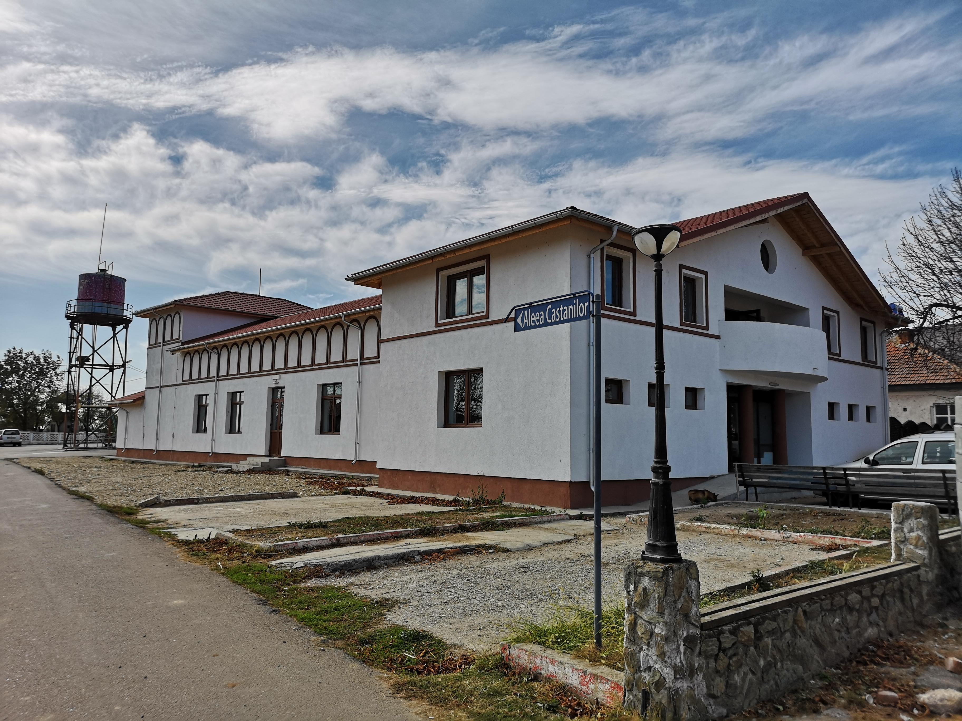Locuitorii din Dobrosloveni sunt aștepați la Căminul Cultural pentru consiliere psihologică