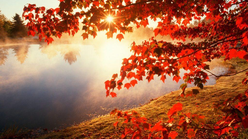 ANM: prognoza meteo pentru perioada 14-27 octombrie! După 21 vremea se schimbă radical