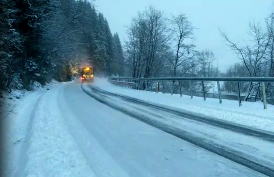 În mai multe zone din ţara noastră a nins ca-n poveşti azi-noapte! Peisajele sunt superbe
