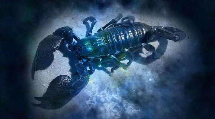Horoscop 21 octombrie 2017. Racii, încurajați de o ...  |Horoscop 21 Octombrie 2020