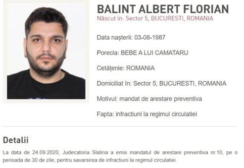 Albert Balint, condamnat la 3 ani de închisoare cu executare
