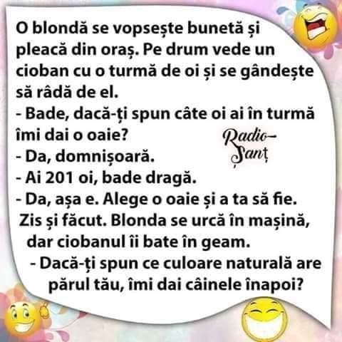 """Ce a pățit o blondă """"sub acoperire"""" care a vrut să-l """"traducă"""" pe ciobanul cu care s-a întâlnit © Facebook"""