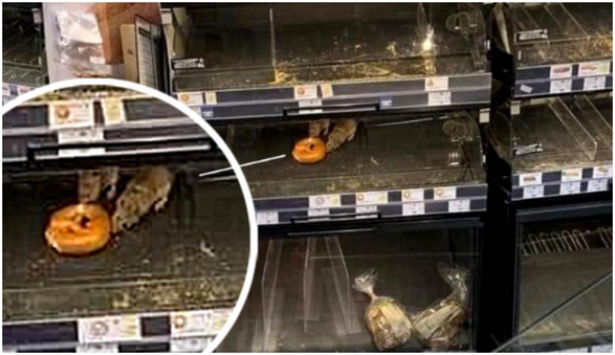 Reprezentanții Mega Image, reacție la imaginea cu șobolanii umblând pe rafturile magazinului din Sectorul 1