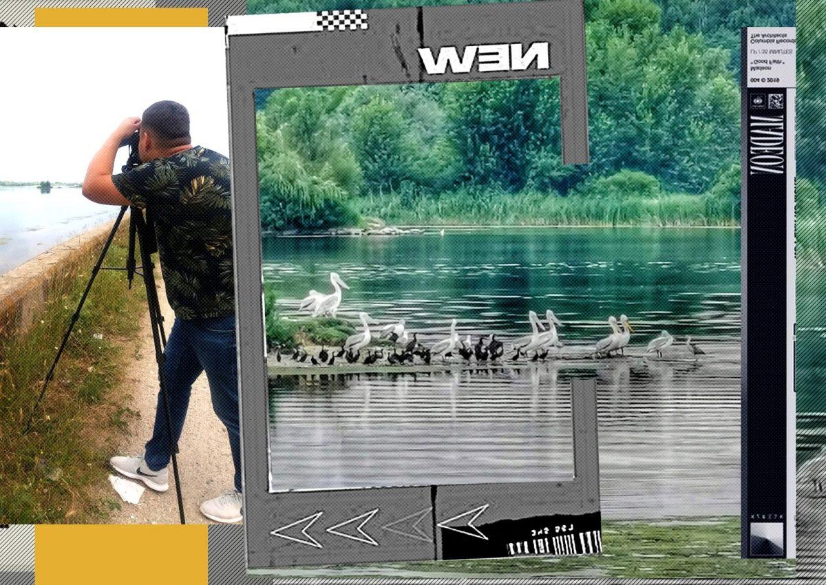 """""""Invazie″ de păsări rare în Delta Olteniei. Sătenii se plâng că le mănâncă cireșele"""